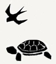 turtle and swallow